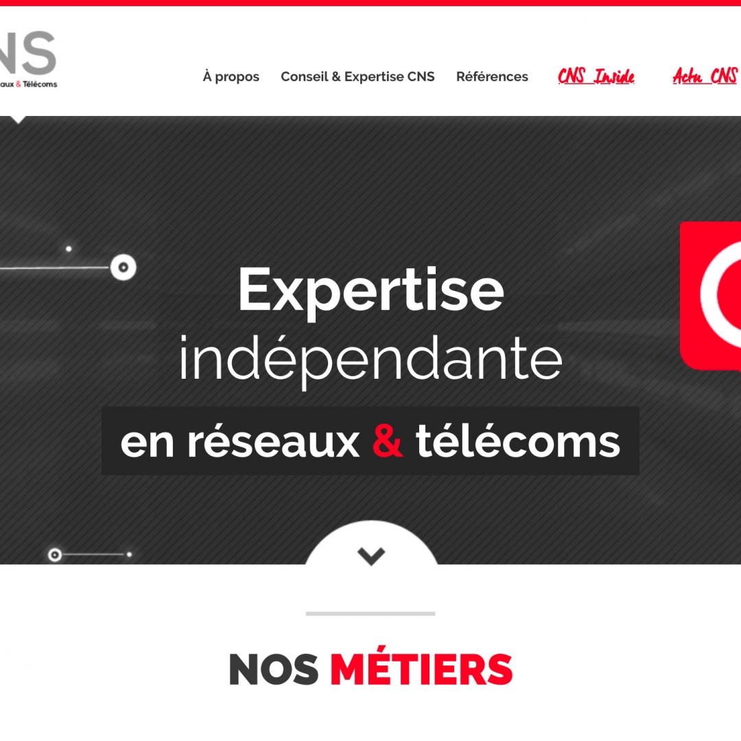 Logo projet CNS com Jérémie de Cuyper